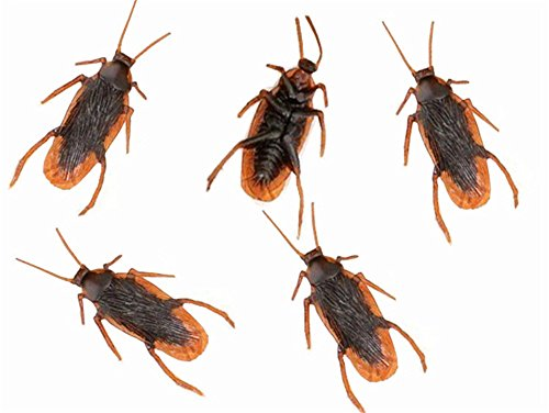 (12Pcs Realistic Simulation Plastic Fake Cockroach Roach Novelty Bugs Joke Toys for April Fool's day Halloween Party Favors Decoration)
