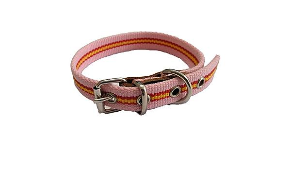 Global Collar de Perro Bandera de España Color Rosa | Collar de Perro de algodón | Collar 35 cms: Amazon.es: Productos para mascotas