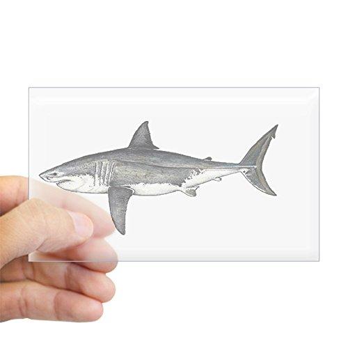 (CafePress Shark Oval Sticker Rectangle Bumper Sticker Car Decal)