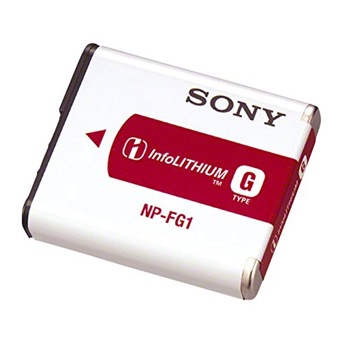 Sony NP-FG1 Rechargeable Lithium-Ion Battery Pack for Select Digital Cameras Bg1 Lithium Ion Rechargeable Battery