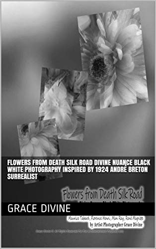 Flowers from Death Silk Road  Divine Nuance Black White Photography  Inspired by 1924 André Breton -