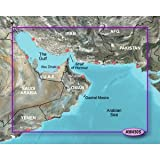 Garmin Bluechart G2 - HXAW450S - The Gulf - Micro SD & SD