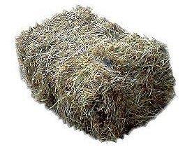 1 Ballen Bio-Heu (ca. 9-10 kg) - Qualitätsheu aus dem Odenwald