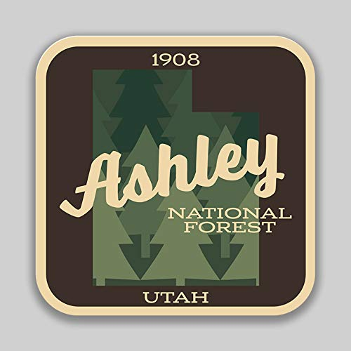 JMM Industries Ashley National Forest Utah Vinyl Decal Sticker Car Window Bumper 2-Pack 4-Inches 4-Inches Premium Quality UV-Protective Laminate PDS1361