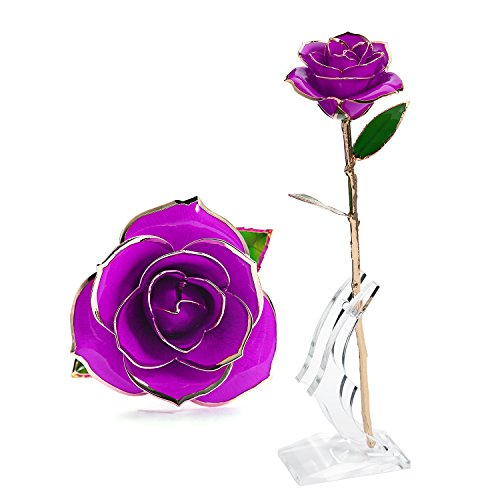 Beautiful Long Stem Gold Foil Trim Rose Flower With Bracket (24K Purple) (Beautiful Rose Flowers)