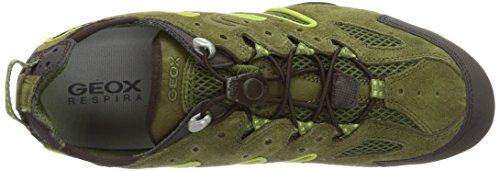 U4207J02214C0031 Verde Uomo Geox UOMO Greencb33s Sneaker Lime J SNAKE Musk twwYq6a