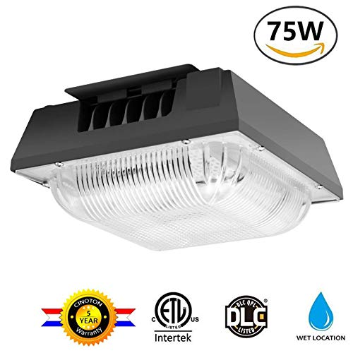 Cinoton 75W LED Canopy Light, (500-600W HPS/HID Replacement), 5000K (Crystal White Glow), 8300 Lumens, Waterproof and Outdoor Rated for Playground, Gym, Warehouse, Garage,Backyard