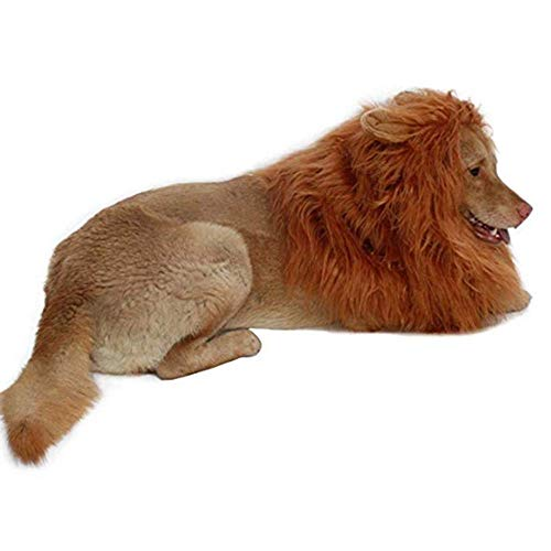 Lion Mane for Dog-Dog Costume DIBBATU Lion Wig for Large or Medium Dogs Halloween Christmas Gift Fancy Hair (Red brown) -