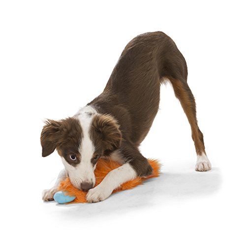 Image of West Paw Rowdies with HardyTex and Zogoflex, Durable Plush Dog Toy for Small to Medium Dogs, Custer, Orange Fur