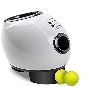 Amazon Com Paws Amp Pals Automatic Dog Ball Launcher Toy