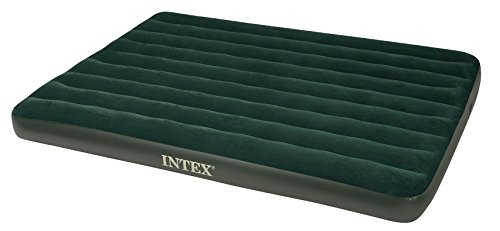 - Home Source 66969E Q Air Bed with 4D Cell Pump, Queen, Green Downy