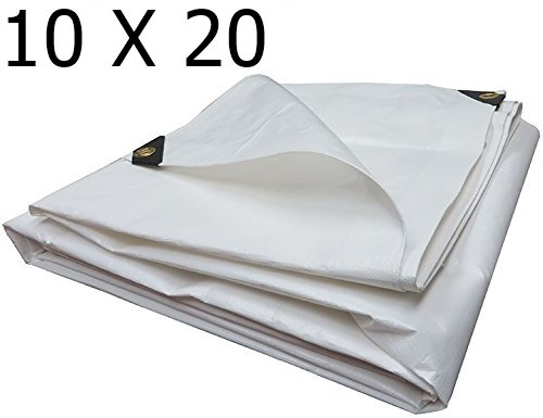 [Heavy Duty Reinforced Tarpaulin All Purpose Canopy Poly Tarps 6Oz 12 Mil (10 X 20 Feet, White)] (10x20 Silver Canopy)