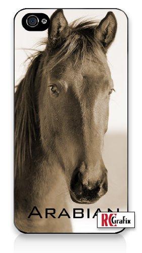 Arabian Horses Images - 9