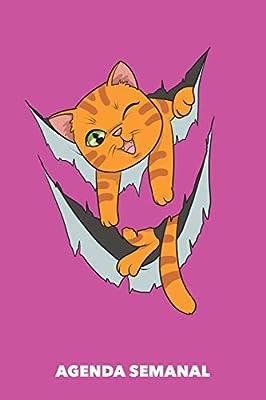 Agenda Semanal: Miau dentro A5 manuscrito floral - Cuaderno con Planificador Semanal 52 Semanas para dueños de gatos rosa: Amazon.es: Agendas Semanales, Gato: Libros