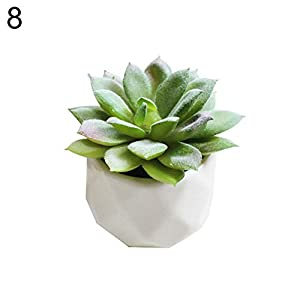 XKSIKjian's Artificial Plants, 1Pc Artificial Succulent Bonsai DIY Garden Office Decor Flowers, Fakeflowers Bouquet Wedding Party Home Decoration - 8# 11