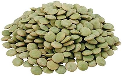 Superfood Garden Planting Non GMO Vegetable Gardening Green Microgreen Sprouts 500g Natures Root Organic Lentil Sprouting Seeds