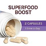 Host Defense, Lion's Mane Capsules, Promotes Mental Clarity, Focus and Memory, Daily Mushroom Supplement, Vegan, Organic, 120 Capsules
