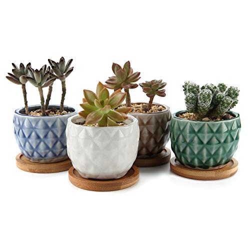 "T4U 3.25"" Ceramic Pineapple Succulent Cactus Planter Pot Set with Free Bamboo Trays Full Color Pack of 4, Home and Office Decoration Desktop Windowsill Bonsai Pots Gift for Wedding Birthday Christmas"