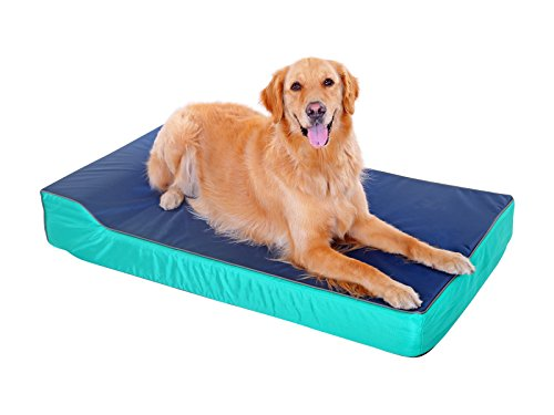 [Summer Overstock Sale] PLS Birdsong Heavy Duty Dog Bed, Large, Firm Orthopedic Dog Bed, Water Resistant Dog Bed, Dog Beds with Removable Cover, Dog Beds for Large Dogs