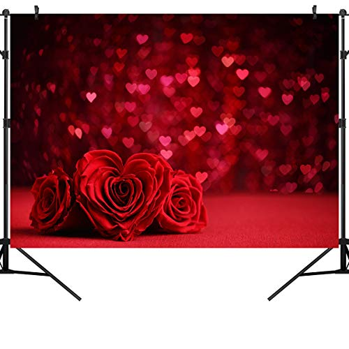 OUYIDA 7X5FT Dream Photo CP Pictorial Cloth Photography Background Computer-Printed Vinyl Valentine's Day Backdrop VDD122 -