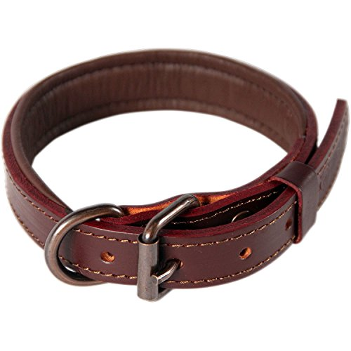 Logical Leather Padded Dog Collar - Best Full Grain Heavy Duty Genuine Leather Collar - Brown - Medium