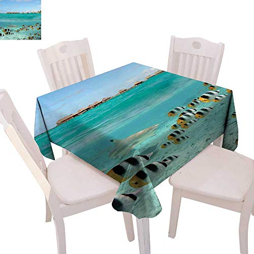 (cobeDecor Ocean Dinner Picnic Table Cloth Blacktip Reef Shark Chasing Butterfly Fish Lagoon of Bora Bora Tahiti Waterproof Table Cover for Kitchen 50