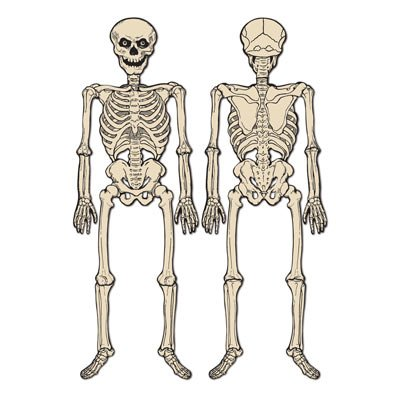 Beistle Jointed Skeleton, 4-Feet 3-Inch