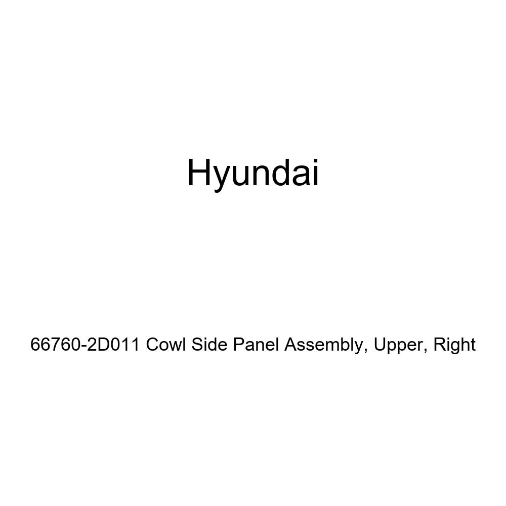Right Genuine Hyundai 66760-2D011 Cowl Side Panel Assembly Upper