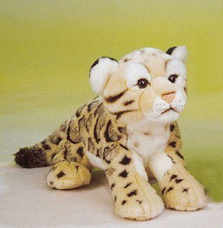 Amazon Com Clouded Leopard 12 By Leosco Toys Games
