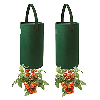 Pri Gardens Upside Down Tomato Planter, (2- Pack) Hooks Included (Requires Fertilizer, not Included): Garden & Outdoor
