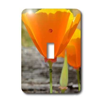 3dRose Lsp_22957_1 California Poppy Ii Single Toggle Switch
