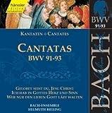 Edition Bachakademie Vol. 29 (Kantaten BWV 91-93)