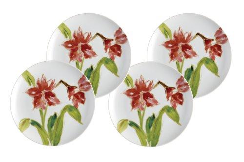 Paula Deen Dinnerware 4-Piece Dessert Plate Set, Amaryllis (Paula Dean Dishware compare prices)