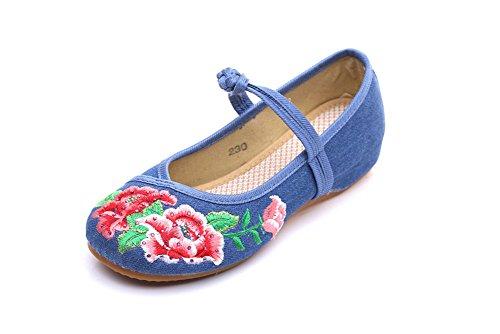Avacostume Femmes Pivoine Broderie Strass Chaussures De Danse Bleu