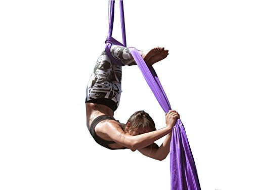 F.Life Aerial Silks Standard Kit Pilates Yoga Flying Swing Aerial Yoga Hammock Silk Fabric for Yoga (10 Yards of Fabric) (Lavendar)
