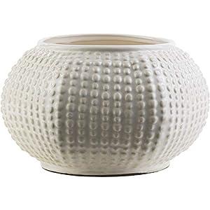 41QA8FrNrkL._SS300_ Beach Vases & Coastal Vases
