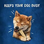 Purina Busy Real Beefhide Dog Chews 20