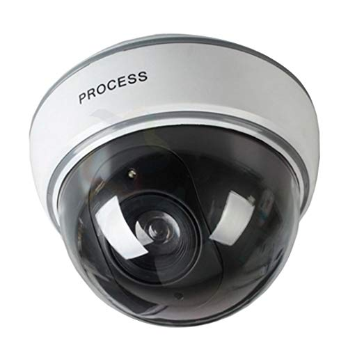 ulation Dome Camera Red LED Blinking Light Security Camera Simulated Cameras ()