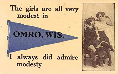 Omro Wisconsin Couple In Chair Pennant Flag Antique Postcard K100191