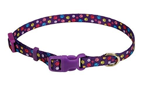 Pet Attire® Coastal Pet Products DCP6321SPW Nylon Adjustable Pattern Dog Collar, X-Small, Special - Nylon Paw Pattern