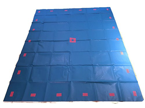 Merav asher's move and learn movement play mat Teacher Education Tool,Children's Movement Game,Helps Gross Motor Skills,Cooperative Play/Teamwork/ Physical Activity for Preschool/ Schools (blue)