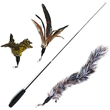 The natural pet company feather wand cat toy for Retractable cat wand