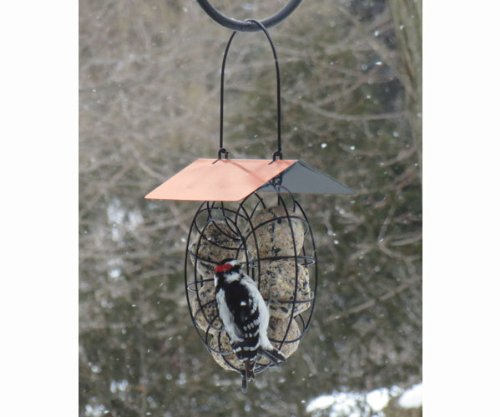 Songbird Essentials SE909 Suet & Seed Ball Feeder Copper Roof (Set of 1)