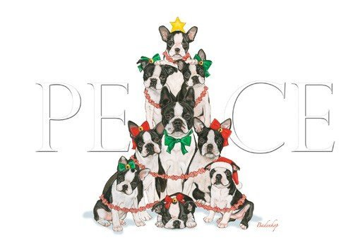 Pipsqueak Productions C542 Holiday Boxed Cards- Boston Terrier