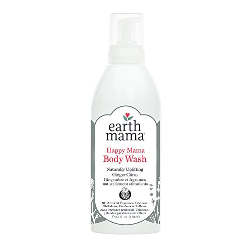 Wellness Mama Hand Soap - 1