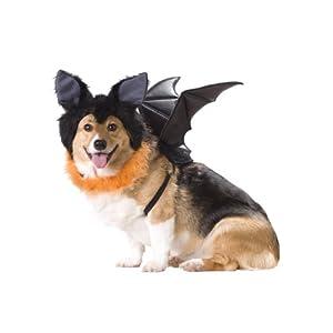 Animal Planet PET20103 Bat Dog Costume 59