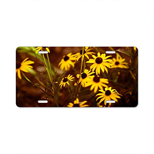 A smiling eye Wild Flower Growing up License Plate Frame Covers Novelty Auto Car Tag Soldiers Firemen Vanity -