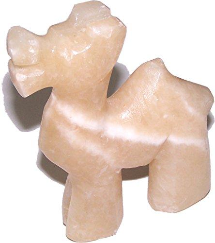 Israel Camel - 6
