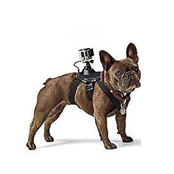 YUXIA Pet abbigliamento Accesorios GoPro Arnés para perros con videocámara/tornillo/J-Hook