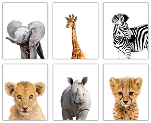 decorshop Cute Safari Nursery Decor | Set of 6 Unframed 8×10 Animal Wall Art Printed on Thick Cardstock | Bring Happy Colors into Your Nursery Wall Decor | Baby Nursery Decor for Boys and Girls